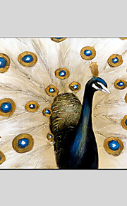 Peacock Style Canvas Material Oil Paintings with Stretched Frame Ready To Hang Size 60*90CM