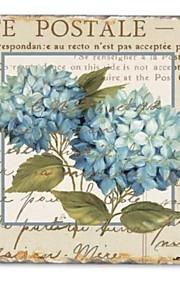 Stretched Canvas Print, Blue Hydrangeas