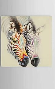 מצויר ביד מופשט / בעלי חיים ציורי שמן,מודרני / קלאסי / סגנון ארופאי פנל אחד בד ציור שמן צבוע-Hang For קישוט הבית