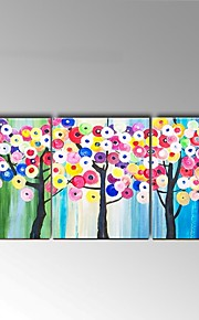 Hand-Painted Still Life / Floral/Botanical 100% Hang-Painted Oil Painting,Modern / Pastoral Three Panels Canvas Oil Painting For Home