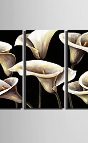 Mini Size E-HOME Oil painting Modern White Calla Pure Hand Draw Frameless Decorative Painting Set of 3