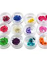 12 färg torkade blommor nagel konst Dekorationer
