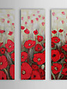 Hand Painted Oil Painting Floral Poppy with Stretched Frame Set of 3 1309-FL0926