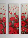 Dipinti a mano della pittura a olio di papavero floreale con telaio allungato Set di 3 1309-FL0926