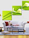 Stretched Canvas Art Botanical Flying Tuplips Set of 3