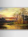 Handmålade oljemålning Landskap 1211-LS0184
