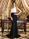 TS Couture® Formal Evening Dress - Multi-color Plus Sizes / Petite Trumpet/Mermaid One Shoulder Court Train Lace