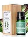Isilandon Chest Förstora och skönhet Massageessen Oil 10ml
