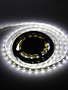 5M 120W 300x5630 SMD fraiche lampe de bande de LED White Light (12V DC)