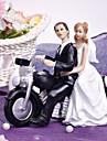 Cake Topper Non-personalized Vehicle / Classic Couple Resin Bridal Shower / Wedding White / Black Garden Theme / Classic Theme Gift Box