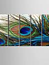 Stillebenskonst av påfågelsfjäder på sträckt kanvas (set om fem)