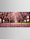 Transferee sur toile: Chemin de l\'art du paysage de Sakura Set de 3