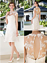 A-line Petite / Plus Sizes Wedding Dress - Ivory Knee-length Jewel Lace