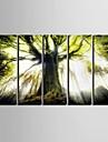 Paysage Moderne,Cinq Panneaux Verticale Imprimer Art Decoration murale For Decoration d\'interieur