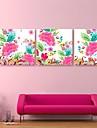 e-home® lona esticada arte padroes coloridos set decoracao pintura de 3