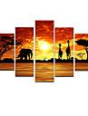 Peint a la main AnimalModern Cinq Panneaux Toile Peinture a l\'huile Hang-peint For Decoration d\'interieur