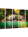 visuelle star®natural toile de l\'art du paysage impression, impression sur toile paysages foret photo, etire et pret a accrocher