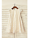 Sheath / Column Knee-length Flower Girl Dress - Lace Short Sleeve Scoop with