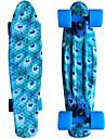 blå påfågel grafisk tryckt plast skateboard (22 tum) cruiser styrelse med ABEC-9 lager
