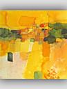 abstrato famoso / ainda vida / fantasia / estilo / lazer / pintura a oleo moderna / realismo pintados a mao, um painel canvas