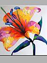 enda modern abstrakt ren handen dra ramlösa dekorationsmåleri blommande blommor