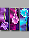 Pictat manual Abstract Floral/Botanic Orizontal,Modern Trei Panouri Canava Hang-pictate pictură în ulei For Pagina de decorare