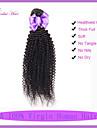 malaysiska oskuld kinky lockigt hår 1st mycket hår buntar obearbetat mänsklig jungfru hårförlängning kinky lockigt