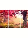 Abstrakt / fantasi / Fritid / Landskap / Fotografisk / Modern / Romantik / Popkonst Canvastryck Tre paneler Redo att hänga , Horisontell