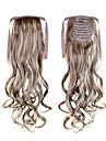bäst säljande lång hästsvans hår filändelser 22inch 55cm 100g # 12/613 blandad färg syntetisk dragsko hästsvans