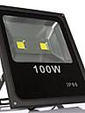 lumiere 100w chaud blanc froid IP66 etanche a l\'eau conduit d\'inondation lampe led (85-265V)