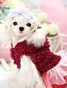 Hundar Huvtröjor / Klänningar Röd / Purpur Hundkläder Vinter Blommig/Botanisk Håller värmen / Mode