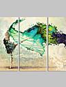 Fantaisie / Loisir / Photographie / Musique / Patriotique / Moderne / Romantique Toile Trois Panneaux Pret a accrocher,Format Horizontal