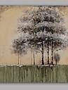 Peint a la main Abstrait / A fleurs/Botanique Peintures a l\'huile,Modern / Classique Un Panneau Toile Peinture a l\'huile Hang-peint For