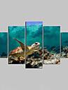 toile set Animal Modern,Cinq Panneaux Toile Toute Forme Imprimer Art Decoration murale For Decoration d\'interieur