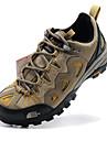 Sneakers Vandringsskor Bergsvandringsskor Herr Anti-halk Anti-Skakning Slitsäker Andas Bärbar Utomhus PrestandaAndningsbart Nät