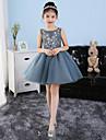 Corta / Mini Tul Vestido de Dama de honor junior       Princesa Joya con Apliques