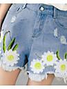 la fața locului de vară noi proaspete și elegante flori brodate mici pantaloni scurti din denim pantaloni scurți roase de vânt colegiu de