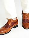Bărbați Primăvară Vară Toamnă Iarnă Confortabili pantofi Bullock Piele Casual Toc Jos Dantelă Negru Maro Galbem