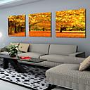 3個セットキャンバスの芸術の風景秋のカエデ