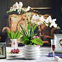 """22 """"elegantne šareni leptir orhideje s bijele keramičke vaze"""