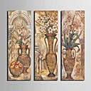 Reprodukce na plátně umění klasický láhev květina ozdoba fotografie sada 3