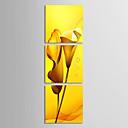 Protezala Canvas Art Cvjetni Žuti Ljiljani skup od 3