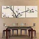 E-home® pruži platnu umjetnosti roza Magnolija ukras slikanje set od 3