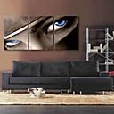 e-HOME® plátně jsi ten pohled do očí dekorace malířské sady 3