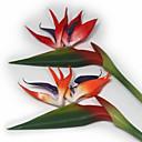 Umělá hmota Strelitzia Umělé květiny