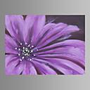 Botanički Canvas Print Jedna ploča Spremni za objesiti , Horizontalan