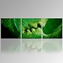抽象 / カジュアル / 名画 / 風景画 / 植物の / 現代風 / ロマンチック / トラベル キャンバスプリント 3枚 ハングアップする準備ができました , 方形