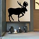 動物 / カートゥン / ロマンティック / ファッション / ホリデー / 風景画 / 形 / ファンタジー ウォールステッカー プレーン・ウォールステッカー , PVC 58cm x 58cm ( 23in x 23in )